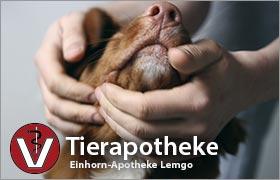 tierapotheke_web_teaser_208x180px